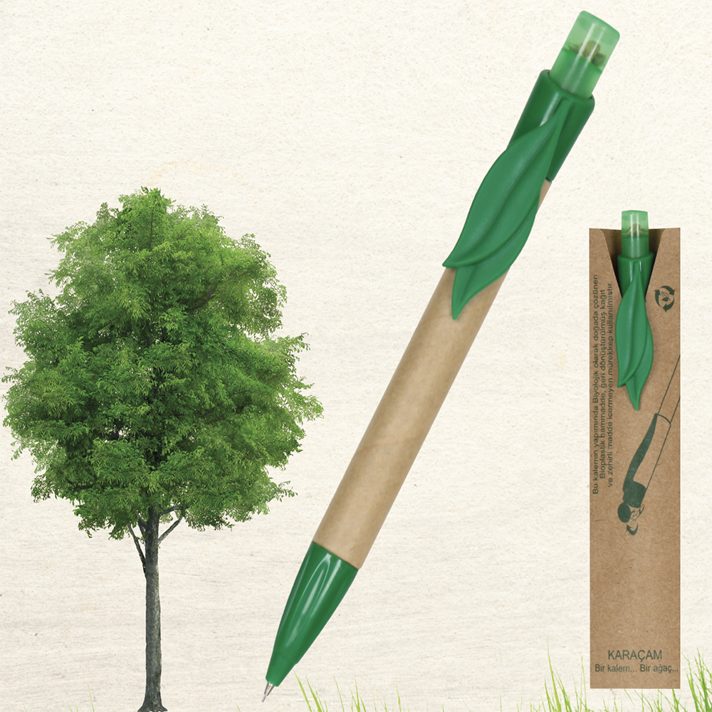 Seed and Pencils